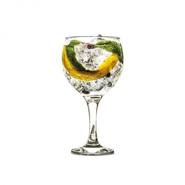 Una copa de gin tonic con cítricos y bayas de enebro