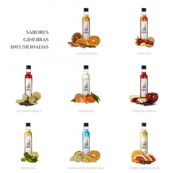 Todos los sabores de gins