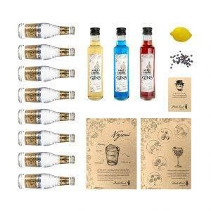 "El Pack de gin tonics ""Tríbu"" con tres botellas de ginebra"